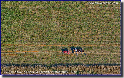 A close-up aerial view of workers picking up pumpkins near Fremont, Ohio.