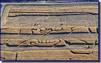 Aerial photo - partially harvested corn maze - rural Ohio