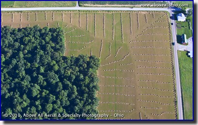 An aerial view of straw bales awaiting pickup in an Amish farmer's field near Kidron, Ohio