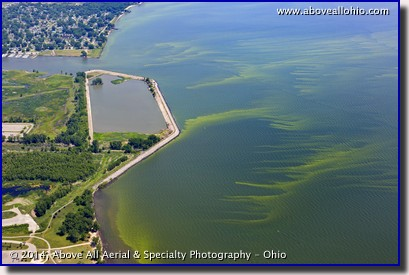 Aerial view of green algae in Lake Erie near Toledo, Ohio, prior to the summer toxic algae bloom that shut down the citiy's water supply for days.