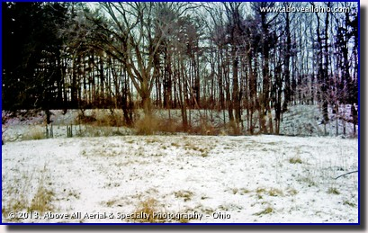 A visible light image of several deer in the woods in winter.